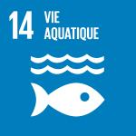 F_SDG goals_icons-individual-rgb-14